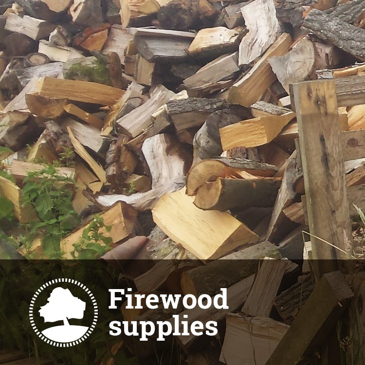 Cambridge Trees Firewood Supplies